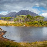 derryclare for yvonne
